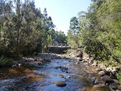 Farmhouse Creek