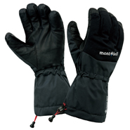 Alpine Gloves Fit Men's